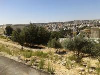 ارض للبيع في عرقوب خلدا - مقابل الالبا هاوس منطقة فلل