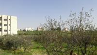 ارض للبيع في شفا بدران - قرب المؤسسة العامّة للغذاء و ال